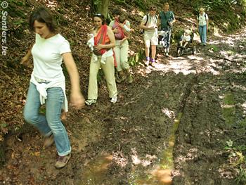 Le passage de quelques engins motorisés peuvent dégrader durablement un chemin forestier - © Sentiers.be