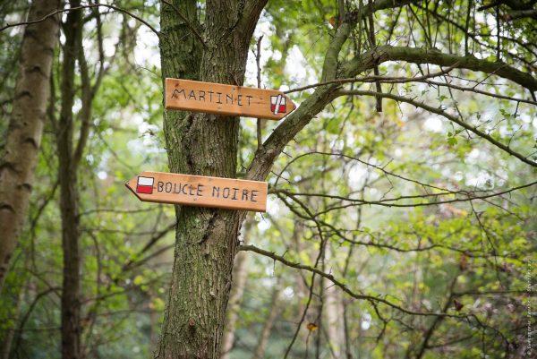 La Boucle Noire traverse de nombreuses zones où la nature à repris ses droits comme sur le terril du Martinet à Roux.