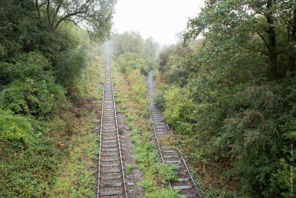 Une ligne de chemin de fer s'enfonçant dans la jungle du Congo ? Non, simplement la ligne rejoignant la centrale thermique d'Amercœur.