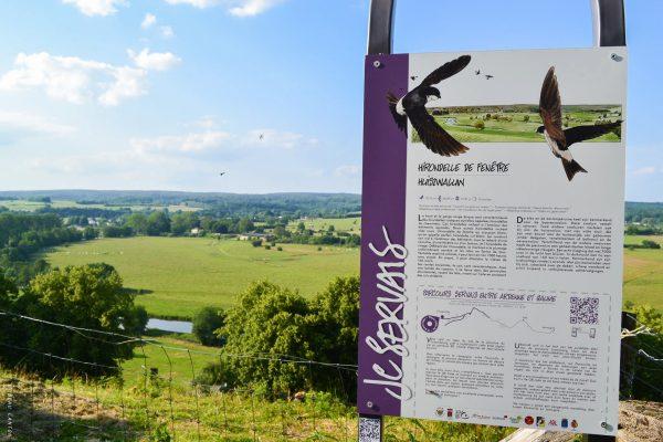 Le Centre Culturel et la Maison du Tourisme ont réalisé un parcours permanent d'une dizaine de kilomètres entre Jamoigne et Florenville,mettant en valeur le patrimoine de la région et dont les panneaux didactiques sont des reproductions d'extraits de planches des bandes dessinées.