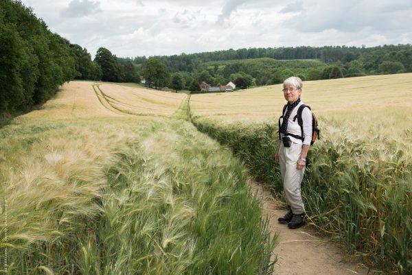 Les sentiers de Baisy-Thy n'ont aucun secret pour Colette, y compris ceux qui traversent les parcelles agricoles.Ils sont régulièrement fréquentés par la population de la région et sont donc bien visibles parmi les cultures.