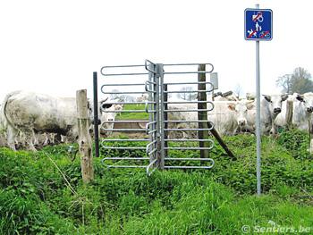 L'agriculteur à été obligé d'installer un tourniquet, mais tout est fait pour décourager le passage - © Sentiers.be