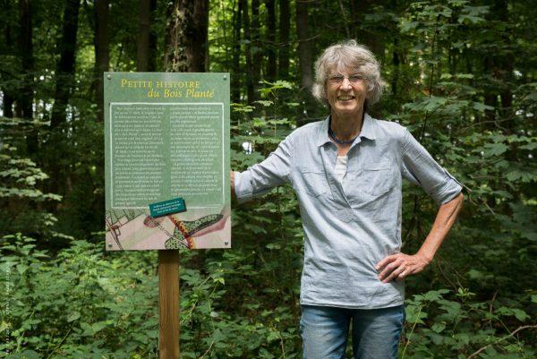 Panneau didactique sur l'histoire du « Bois Planté »